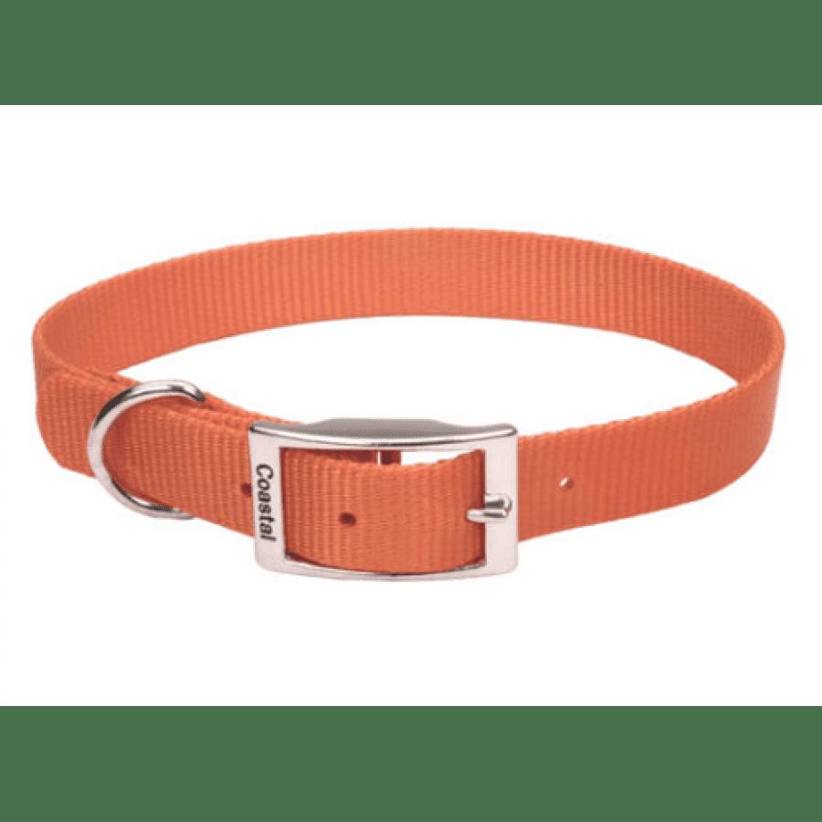 Coastal - Standard Buckle Nylon Dog Collar - Sunset Orange - 1.5 x 25.5CM